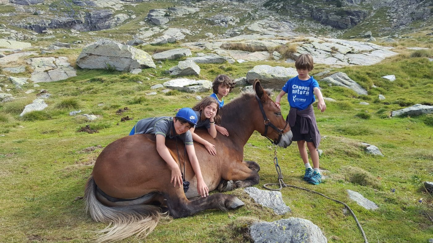 Colonies Estiu Andorra - Campus Natura